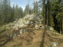 Ворохтянське лісове господарство
