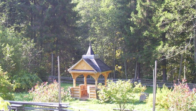 Використання лісового фонду