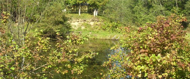 Характеристика рік та водоймищ